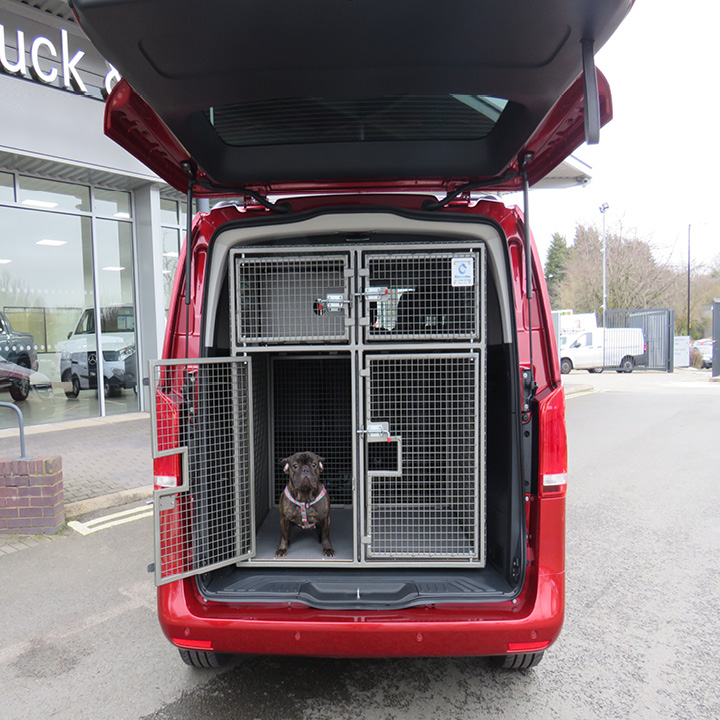 Best of breed: The stunning Mercedes-Benz Vito Sport with dog-carrying conversion which Midlands Truck & Van will be presenting at this week's Crufts: image